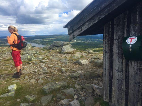 Toppen av Nevelfjell